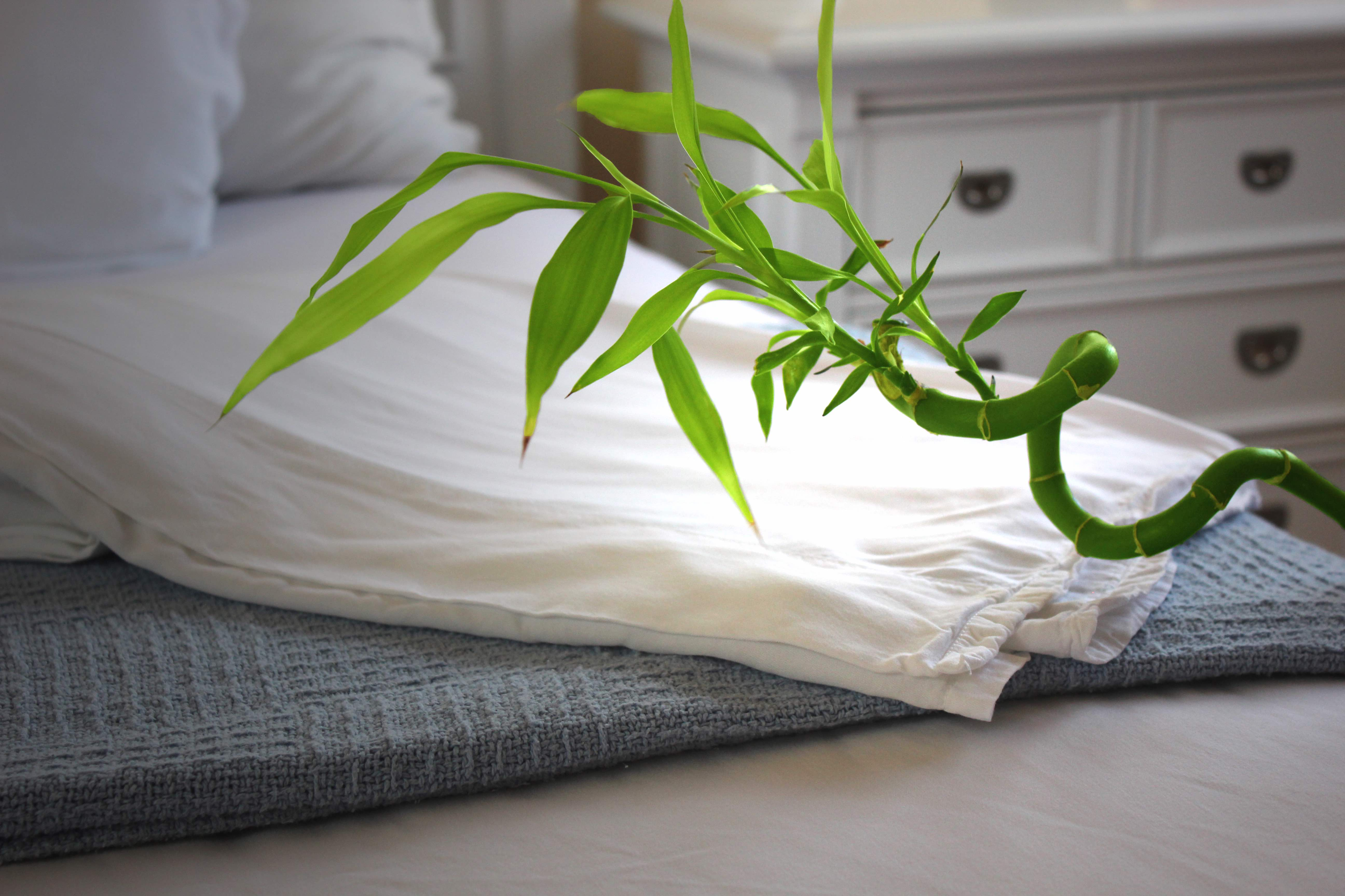 Best Bamboo Sheets reviews by www.snoremagazine.com